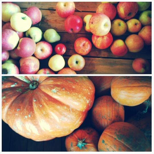 Pommes et citrouilles cabane